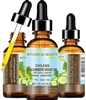 Chilean Cucumber Seed Oil Botanical Beauty