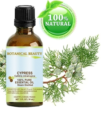 Cypress Essential Oil Botanical Beauty