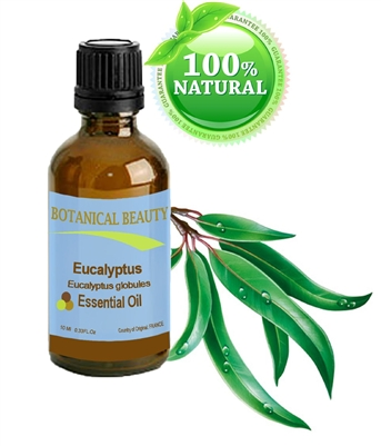 Botanical Beauty EUCALYPTUS Essential Oil