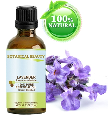 Botanical Beauty LAVENDER Essential Oil