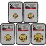 2013 China Gold Panda - 5-pc Year Set - NGC MS69 - First Releases - Red Label
