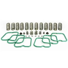 Pacbrake HP10243 Premium Kit 12 Heavy Duty Valve Springs for 1994-1998 Dodge 5.9L Cummins
