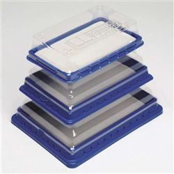 Dissection Tray - Medium Replacement Pad