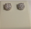 CZ Earrings EE50424