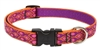 "Lupine 3/4"" Alpen Glow 15-25"" Adjustable Collar"