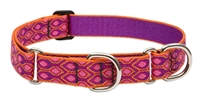 "Lupine 1"" Alpen Glow 19-27"" Martingale Training Collar"