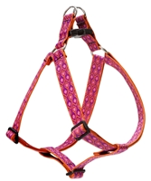 "Lupine 1"" Alpen Glow 24-38"" Step-in Harness"