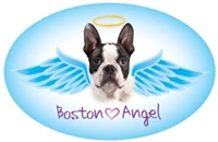 Boston Angel Oval Magnet - A44