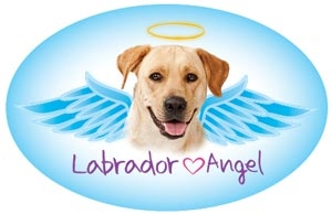 Labrador (Yellow) Angel Oval Magnet - A49