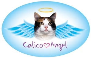 Calico Angel Oval Magnet - A72