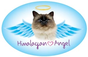 Himalayan Angel Oval Magnet - A73