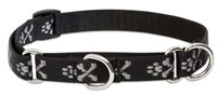 "Lupine 3/4"" Bling Bonz 14-20"" Martingale Training Collar"