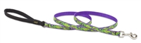 "Retired Lupine 1/2"" Big Easy 4' Padded Handle Leash"