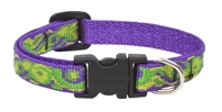 "Retired Lupine 1/2"" Big Easy 8-12"" Adjustable Collar"
