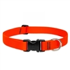 "LupinePet Basic Solids 1"" Blaze Orange 12-20"" Adjustable Collar for Medium and Larger Dogs"