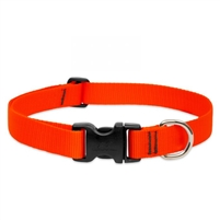 "Lupine Basic Solids 1"" Blaze Orange 12-20"" Adjustable Collar for Medium and Larger Dogs"