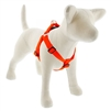 "Lupine 1"" Blaze Orange 19-28"" Step-in Harness"