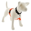 "Lupine 1"" Blaze Orange 26-38"" No-Pull Harness"