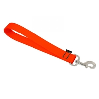 "Lupine 1"" Solid Blaze Orange Training Tab"