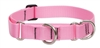 "Lupine 1"" Pink 19-27"" Martingale Training Collar"