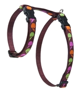 "Retired Lupine 1/2"" Candy Apple 9-14"" H-Style Cat Harness"
