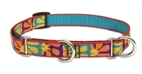 "Lupine 3/4"" Crazy Daisy 10-14"" Martingale Training Collar"