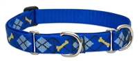"LupinePet 1"" Dapper Dog 19-27"" Martingale Training Collar"