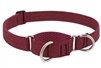 "Lupine ECO 1"" Berry 19-27"" Martingale Training Collar"