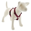"Lupine ECO 1"" Berry 24-38"" Roman Harness"