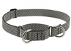 "Lupine ECO 1"" Granite 19-27"" Martingale Training Collar"