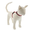 "Lupine 1/2"" El Paso 12-20"" H-Style Cat Harness"