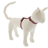 "Lupine 1/2"" El Paso 9-14"" H-Style Cat Harness"