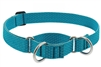 "Lupine ECO 1"" Tropical Sea 15-22"" Martingale Training Collar"