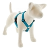 "Lupine ECO 1"" Tropical Sea 20-32"" Roman Harness"