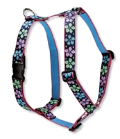 "Lupine 1"" Flower Power 20-32"" Roman Harness"