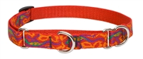 "Lupine 3/4"" Go Go Gecko 10-14"" Martingale Training Collar"