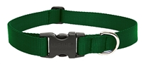 "Lupine Basic Solids 1"" Green 25-31"" Adjustable Collar for Medium and Larger Dogs"