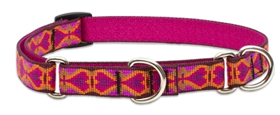 "Retired Lupine 3/4"" Heart 2 Heart 10-14"" Martingale Training Collar"