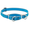 "Lupine High Lights 1"" Blue Diamond 15-22"" Martingale Training Collar"