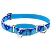 "Lupine High Lights 1"" Blue Paws 19-27"" Martingale Training Collar"