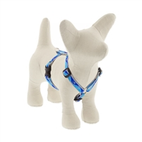 "Lupine High Lights 1/2"" Blue Paws 9-14"" Roman Harness"