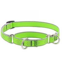 "Lupine High Lights 3/4"" Green Diamond 10-14"" Martingale Training Collar"