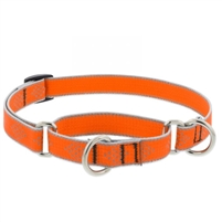 "Lupine High Lights 3/4"" Orange Diamond 10-14"" Martingale Training Collar"