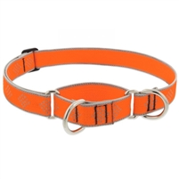 "Lupine High Lights 1"" Orange Diamond 15-22"" Martingale Training Collar"