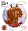 Vizsla - Up to Snow Good Holiday Ornament - Made in the USA