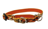 "Retired Lupine Spooky 10-14"" Combo/Martingale Training Collar - Medium Dog"