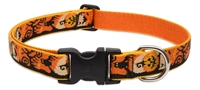 "Retired LupinePet 1"" Spooky 12-20"" Adjustable Collar - Large Dog"