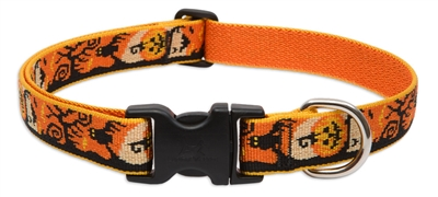 "Lupine 1"" Spooky 16-28"" Adjustable Collar - Large Dog"