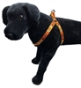 Lupine Spooky Step-in Harness - Large Dog