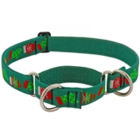 "LupinePet 1"" Stocking Stuffer 15-22"" Martingale Training Collar - Large Dog"